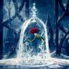 エマ・ワトソン主演の実写版『美女と野獣』、来年4月GW直前に公開決定! 画像