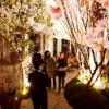 アンダーズ 東京「ルーフトップ バー」で夜景とお酒&美食が楽しめる「さくら ガーデン」開催 画像