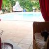 ホテル選びはいつもワクワク&ドキドキ...山口和幸のツール・ド・フランス日記 画像