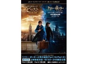 『ハリー・ポッターと死の秘宝』、『ファンタビ』直前に初4DX上映!主人公が並ぶポスターも解禁 画像