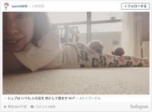 木村沙織の脚を枕にする愛犬…ファン「贅沢な枕やなぁ」 画像