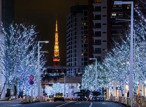 けやき坂のイルミネーションが暖色系に一新! 六本木ヒルズのクリスマス2016の見どころ 画像
