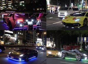 【動画】光るランボルギーニ軍団...爆音響かせた東京ハロウィンナイト 画像