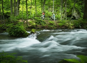 星のリゾート、奥入瀬渓流を自転車で散歩する「渓流ポタリング」5月開催 画像
