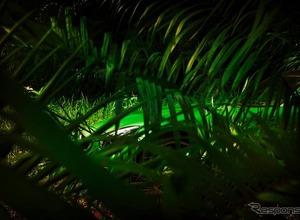メルセデスAMG GT、最強の「R」がジャングルに!? 画像