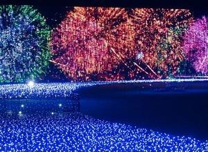 東京ミッドタウンで「SUMER LIGHT GARDEN」、日本の夏の涼を五感で愉しむ 画像