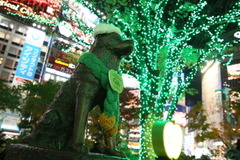 渋谷ハチ公前にイルミネーション点灯…ハードシードル仕様に