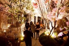 アンダーズ 東京「ルーフトップ バー」で夜景とお酒&美食が楽しめる「さくら ガーデン」開催
