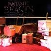 『ファンタスティック・ビーストと魔法使いの旅』グローバルファンイベント