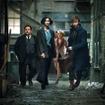 『ファンタスティック・ビーストと魔法使いの旅』(C) 2016 Warner Bros. Ent.  All Rights Reserved.Harry Potter and Fantastic Beasts Publishing Rights (C) JKR.