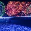 東京ミッドタウンで7月15日(金)から8月28日(日)まで「MIDTOWN ◇ SUMMER 2016」(ミッドタウン ◇ ラブズ サマー ※◇はハートマーク)開催!