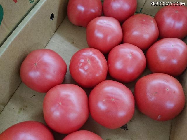 Xperia Z5 Premiumで撮影した野菜