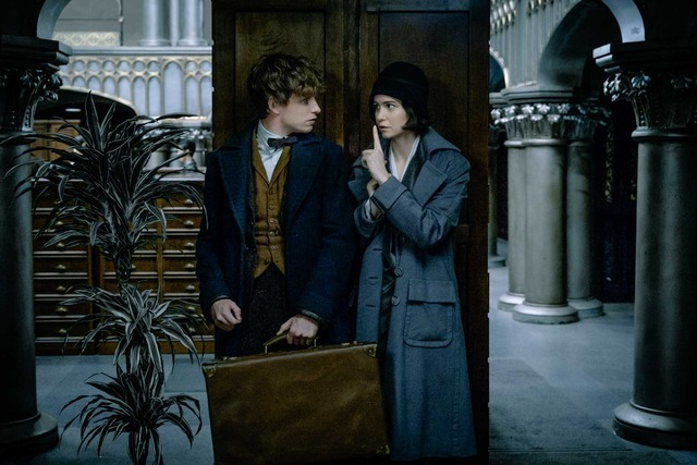 『ファンタスティック・ビーストと魔法使いの旅』 (C) 2016 Warner Bros. Ent.  All Rights Reserved.Harry Potter and Fantastic Beasts Publishing Rights (C) JKR.